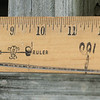 After calibration ruler photo enlargement.