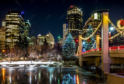 Calgary Christmas Lights