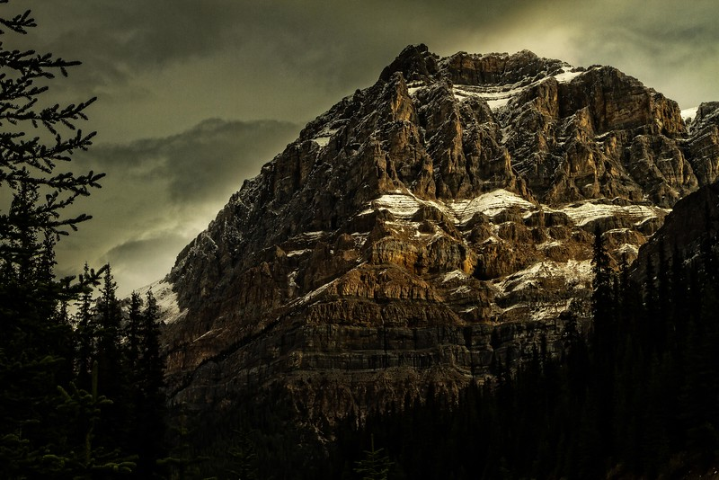 The Canadian Rockies are made of sedimentary rock - limestone and shale - which makes them more rugged and less hospitable to plant life.<br /> Photo © Cindy Clark