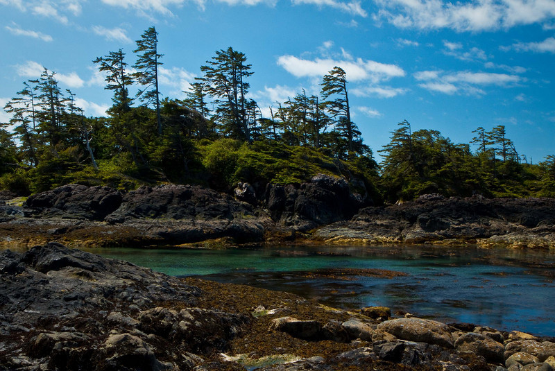 Ever wild, ever beautiful - the west coast of Vancouver Island, B.C.  This is a small lagoon on Wickaninnish Beach.<br /> Photo © Cindy Clark