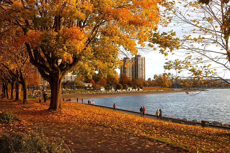 A perfect day for an autumn walk near Stanley Park in Vancouver.<br /> Photo © Carl Clark