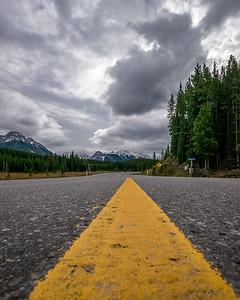 Along the road   Jay