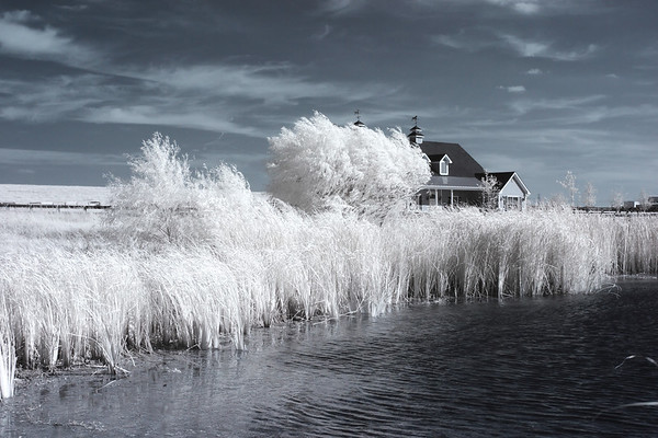 Canon 10D Infrared