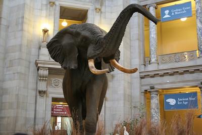Washington Photo Safari - Nov. 18, 2006
