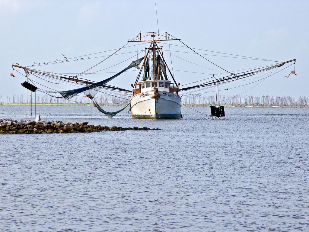 Shrimp boat in Ocean Springs