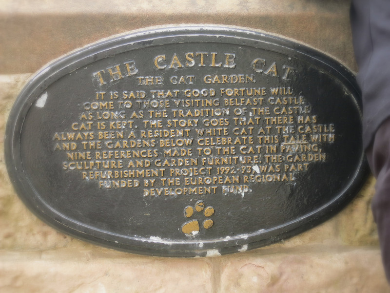 All castles must have a cat, so there are permanent ones in the garden