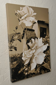 20x30 - Vertical Canvas done in Sepia Tone.