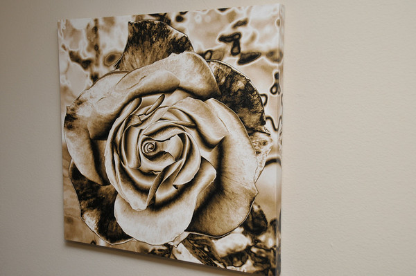 31x30 - My Classic Rose Photo done in Sepia and custom neutral tones. Enhanced for more one of a kind uniqueness! Custom done for a Salon.