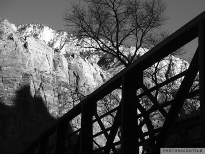 """Zion Vista No. 2"" ~ B&W composition taken near the lodge within Zion National Park in Utah."
