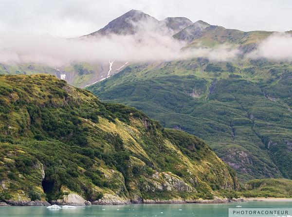Haenke Island