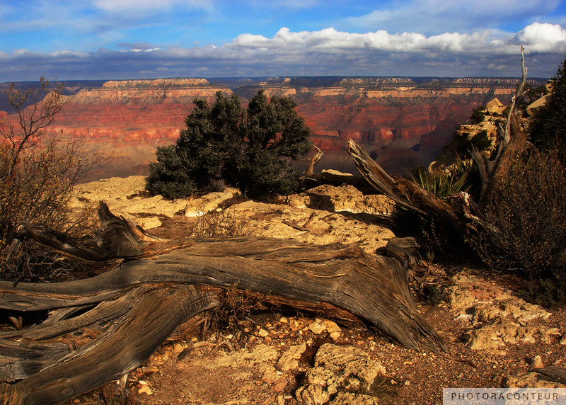 """Grand Canyon Vista No. 9"" ~ Sunset view of the Grand Canyon from the South Rim Trail."
