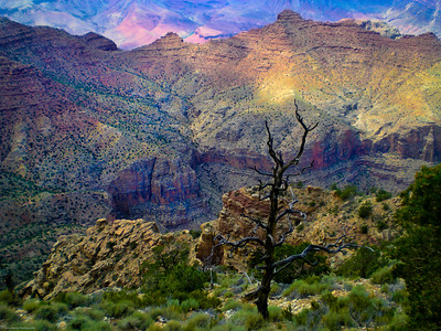 Nature's Painting Grand Canyon, Arizona