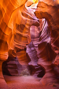 The Cathedral Upper Antelope Slot Canyon Page, Arizona