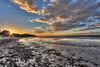 Sesuit Harbor<br /> Dennis, MA<br /> Image#:8989