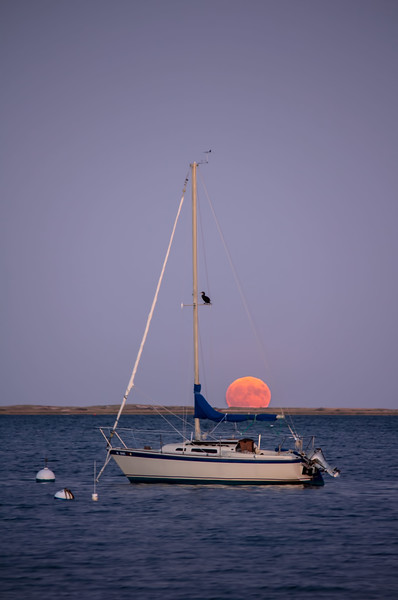 Pleasant Bay<br /> Orleans, MA<br /> Image: 9017