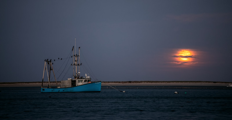 Moon over Aunt Lydias Cove<br /> Chatham, MA<br /> IMG:1511
