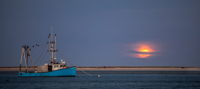 Moon over Aunt Lydias Cove<br /> Chatham, MA<br /> IMG:1499