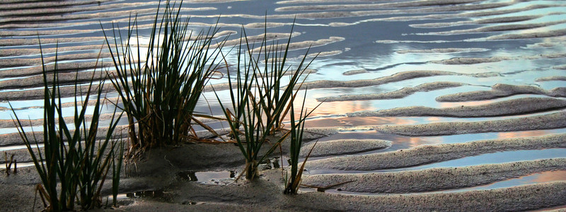 First Encounter Beach<br /> Eastham, MA<br /> Image#:4024 cropped