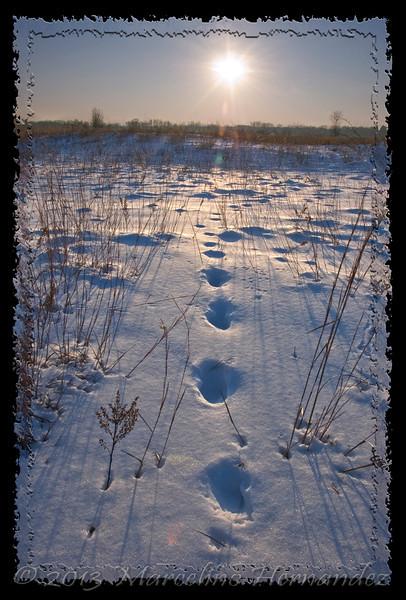 "My version of the old poem ""Footprints""."