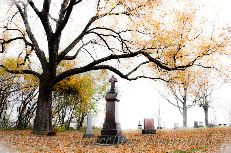 One of the oldest graveyards in Waukegan dating back to the first settlers of Little Fort in the 1800's.