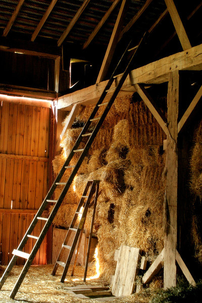 Barn Light & Ladders
