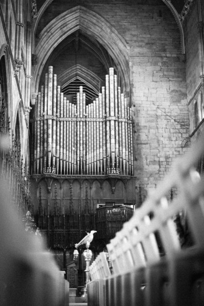Chairs leading towards the well placed eagle and then up towards the massive organ pipes