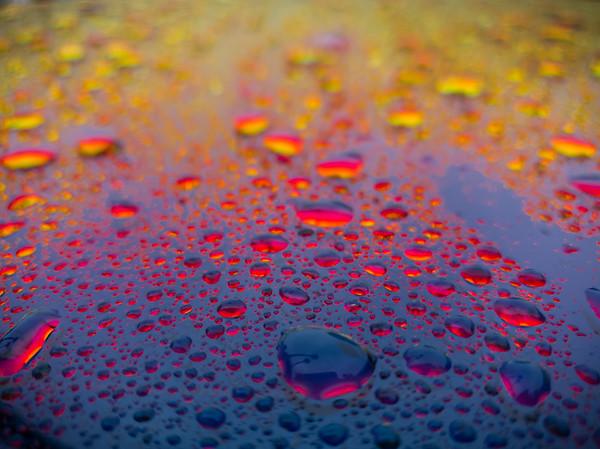 Rain drops on rose-reflecting windows