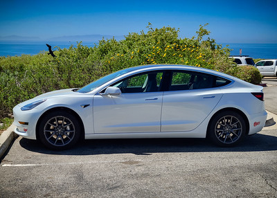 Valerie and I have been coming to Pelican Cove for my runs and her hikes for quite some time now, but I think this is the first time I have driven us in her Model 3