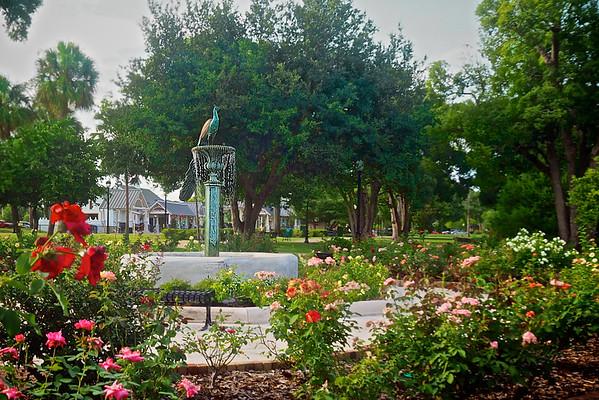 """""""Peacock in Rose Garden  WPP2000"""