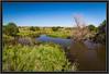 Becker Wildlife Area