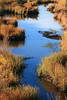 Rio Salado River
