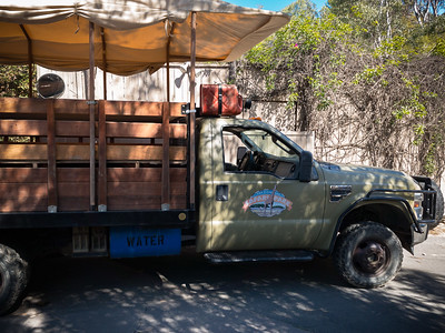 Taking a truck into the park was not an option during our previous visit. Though a more expensive option, it promises to get a bit closer to the animals...with an opportunity to feed them.