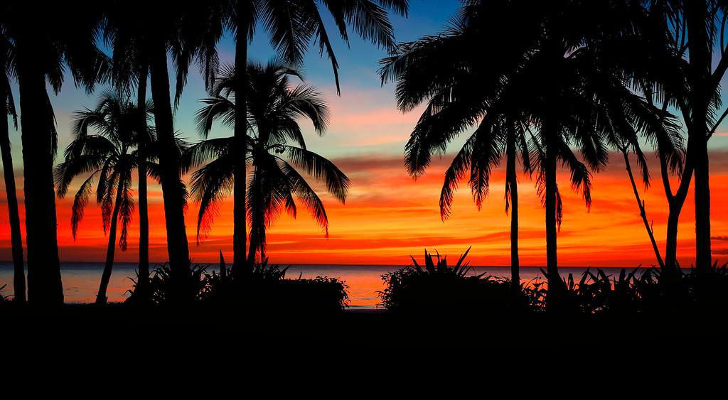 Paradise view