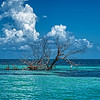 Harvest Caye, Belize