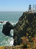 <em>. . . and they still have that view!</em> Point Bonita Light Point Bonita, Golden Gate National Recreation Area, Marin Co., CA Foreground:  <em>Brassica oleracea</em>, Cabbage.