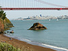 San Francisco from Marin County<br /> Golden Gate National Recreation Area, Marin Co., CA 2012/04/07<br /> &39664 Polygonaceae ----- Primulaceae &#9658