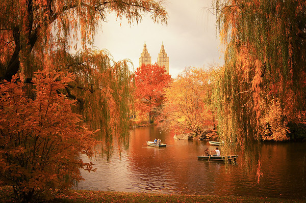 New York Autumn - Central Park Fall Foliage at The Lake