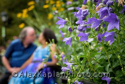 AlexKaplanPhoto-19-7666