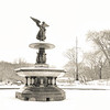 <h2>The Sky's Tears of Joy - Angel of the Waters - Winter - Central Park</h2>  The silence that engulfs the world after a snowfall is deafening.   All heartbeats, all footsteps, all meandering thoughts and evocations are wrapped in a heavy blanket of snow.   Trees cease reaching for the sky, weighed down by the weight of the sky's tears of joy and there is scarcely a breath to be heard.  Winter muffles the earth silencing it's yearnings,  and all at once there is peace.  ---