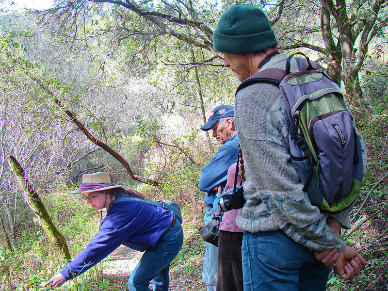 Janet Gawthrop, l., and Gregg Weber, r., lead a Native Plant Society field trip in Chabot Park<br /> Chabot Regional Park, Alameda Co., CA<br /> 3/14/10