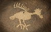 From the Wells Petroglyph Project site, New Mexico.<br /> © Cindy Clark