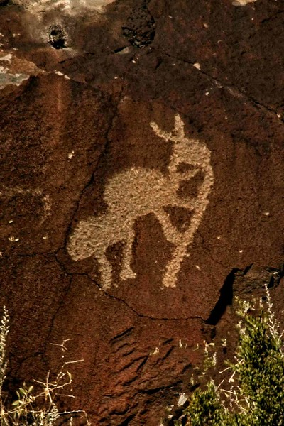 From the Wells Petroglyph Project site, New Mexico.<br /> © Carl Clark