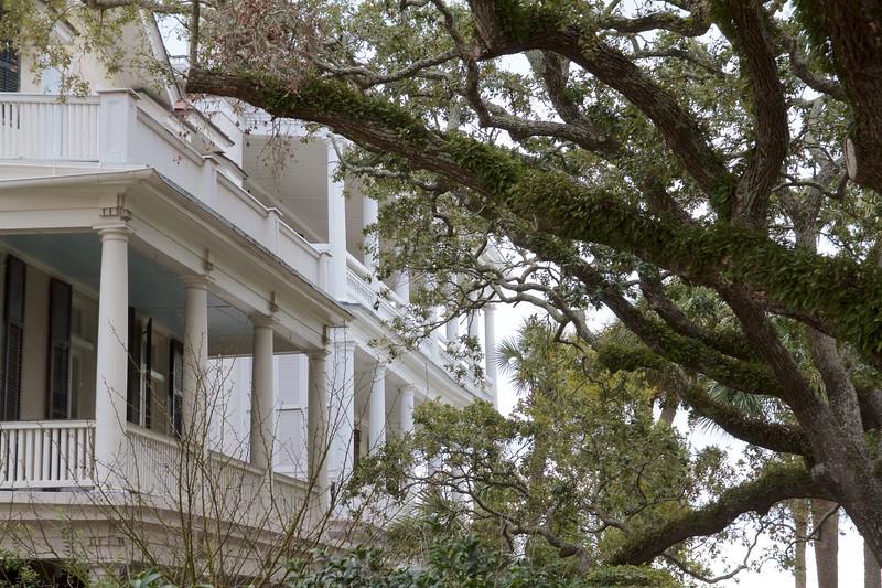 Charleston Downtown 2020 Best 21