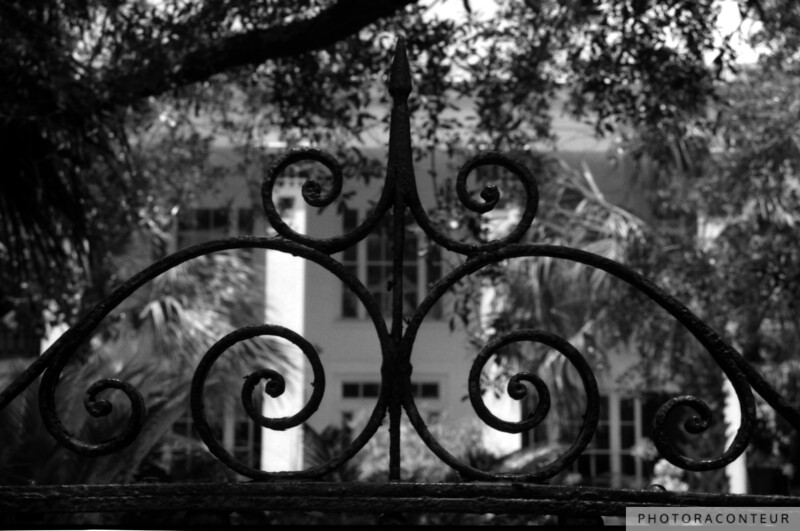 """Hasell Street Gate No. 1, Charleston, SC"" ~ Hasell Street Gate in Charleston, SC.   A sepia toned version is also available, in my ""Charleston in Sepia"" gallery."