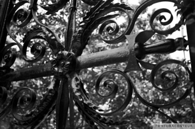 """Sword Gate"" ~ This gate in historic Charleston, South Carolina dates back to around 1848 and was designed by iron craftsman Christopher Werner."