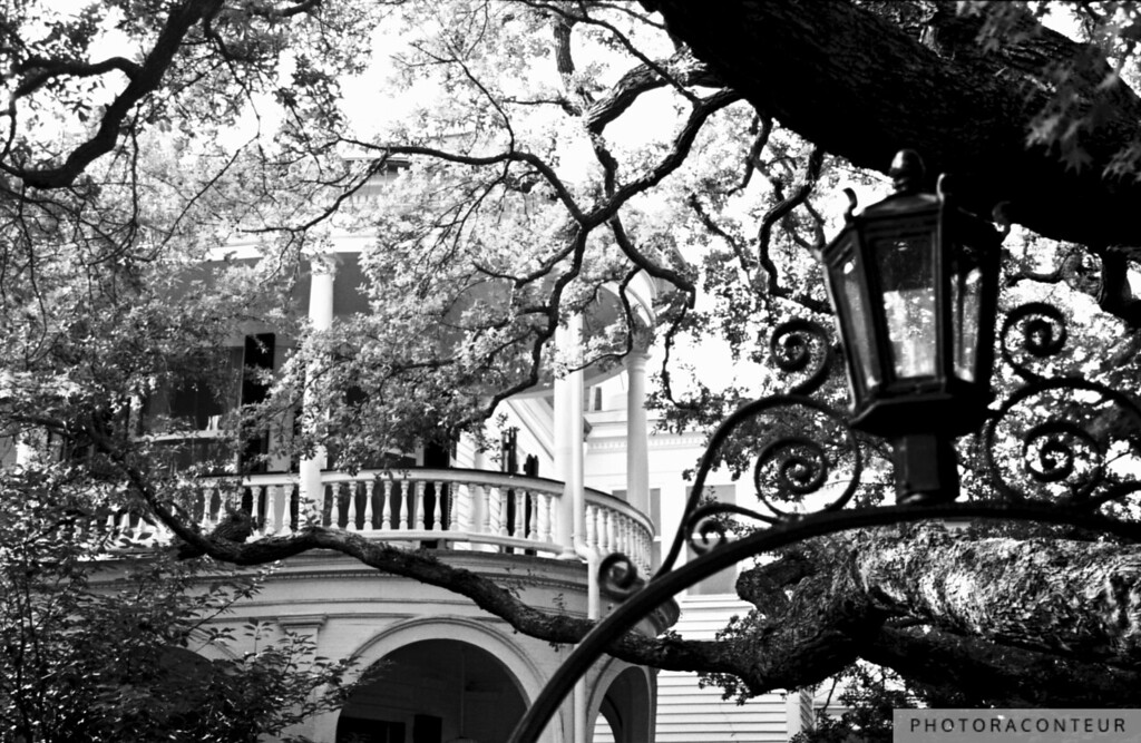 """Meeting Street Porch, Charleston, SC"" ~ Oak trees and wrought iron work are on display at a bed and breakfast in historic Charleston, South Carolina.  A sepia toned version is also available, in my ""Charleston in Sepia"" gallery."