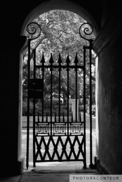 """College of Charleston Gate View"" ~ B&W composition of iron gate at Randolph Hall on the College of Charleston campus in South Carolina.  A sepia toned version is also available, in my ""Charleston in Sepia"" gallery."