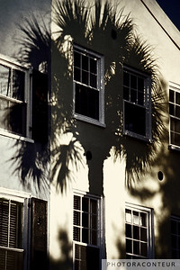 """Palmetto Window Shade"" ~ The shadow of a Palmetto tree provides shade for historic townhomes in Charleston, SC."