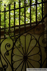 """Garden Gate, Charleston, SC"" ~ Wrought iron gate to driveway and lush grounds of home in historic Charleston, SC."