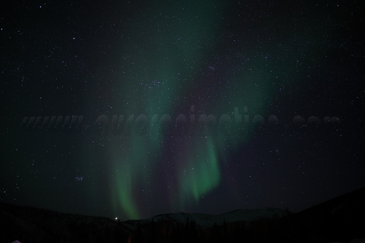 Auroral curtains with Perseus, Cassiopeia, the Pleiades and planet Jupiter <br /> captured from the air strip at Chena Hot Springs at 00:56:54 am on March 23, 2012<br /> Constellations: Taurus, Auriga, Perseus, Cassiopeia, Triangulum<br /> <br /> Photo details: Canon EOS 5D Mark II, Zeiss Distagon 25mm f/2.0 ZE lens